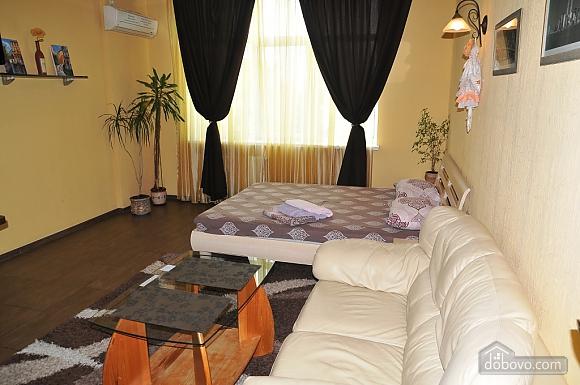 Квартира класса люкс в центре, 1-комнатная (22593), 002