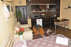Luxury apartment in the center, Studio, 003