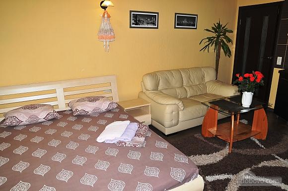 Квартира класса люкс в центре, 1-комнатная (22593), 009