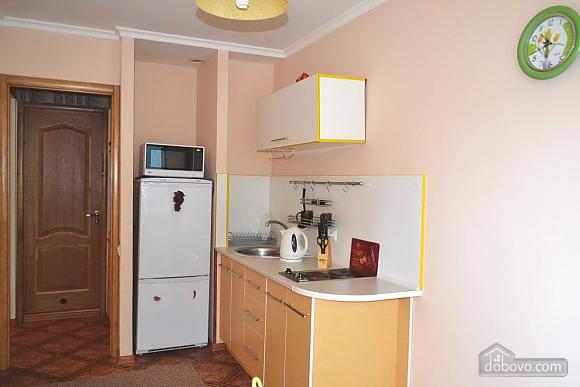Apartment on the Naberezhnaya Pobedu, Studio (46032), 008