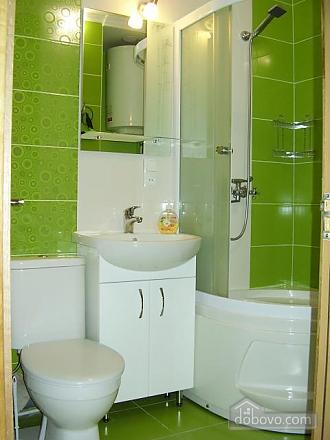 Apartment on the Naberezhnaya Pobedu, Studio (46032), 005