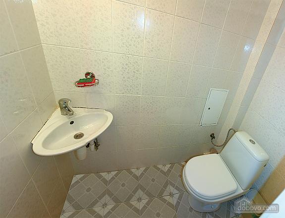 Квартира в Трускавце, 3х-комнатная (46955), 005