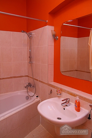 Cheap cozy flat with WI FI, Un chambre (69471), 008