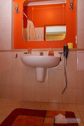 Cheap cozy flat with WI FI, Un chambre (69471), 007