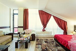 Затишний і просторий номер категорії люкс, 1-кімнатна, 011