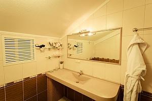 Затишний і просторий номер категорії люкс, 1-кімнатна, 004