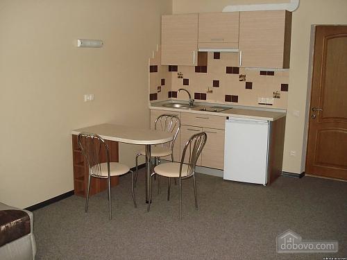 Suit in a mini-hotel, Un chambre (13186), 004