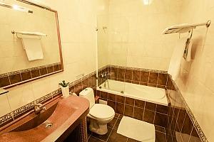 Просторі апартаменти для відпочинку і бізнесу, 1-кімнатна, 004