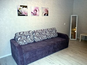 Great bright apartment, Monolocale, 001