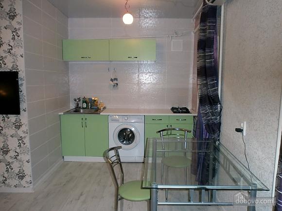 Great bright apartment, Monolocale (51173), 005