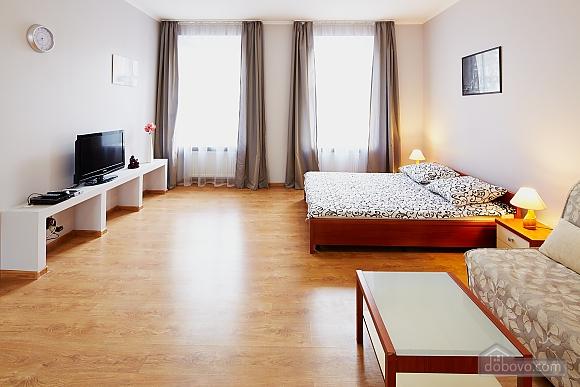 Квартира в центре, 1-комнатная (74613), 001