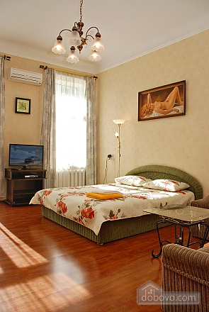 Cozy and bright apartment in the royal house, Monolocale (75799), 001