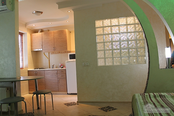 Apartment in Krivoy Rog, Studio (77447), 002