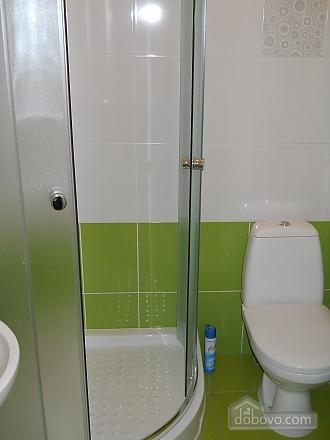 Квартира на Ангеловича, 2х-комнатная (34656), 008
