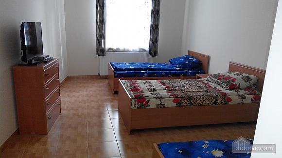 Квартира на Ангеловича, 2х-комнатная (34656), 003