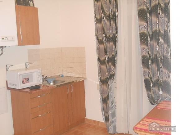 Квартира на Ангеловича, 2х-комнатная (34656), 006