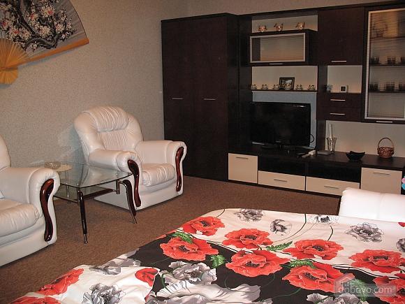 Apartment near to Kievo-Pecherska Lavra, Studio (12469), 001