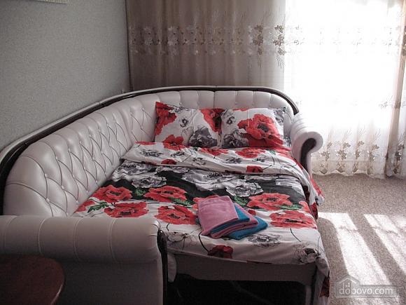 Квартира біля Києво-Печерської Лаври, 1-кімнатна (12469), 002