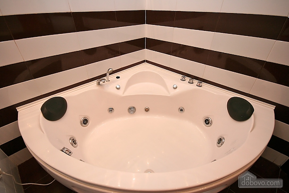 Pleasant with Jacuzzi in the city center, Monolocale (36238), 015