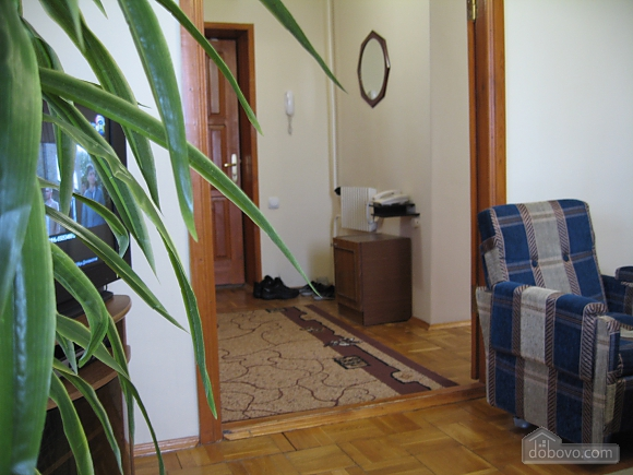 Nice apartment , One Bedroom (15963), 002