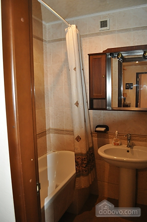 Nice apartment in the city center, One Bedroom (84171), 006