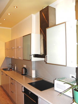 Super Euro apartment in a new luxury house, One Bedroom, 002
