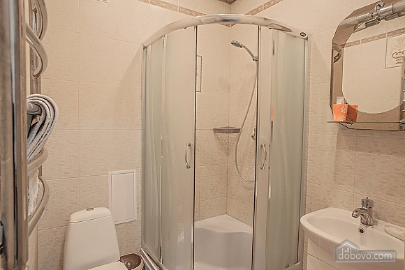 Cozy apartment in Lviv center near the Opera theatre with a car parking, Studio (64753), 011