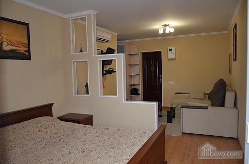 Apartment V.I.P class, Studio (14769), 007