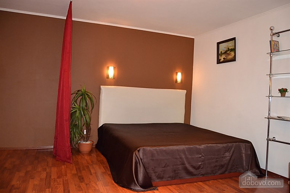 Квартира в центрі Кривого Рогу з євроремонтом, 1-кімнатна (37614), 001