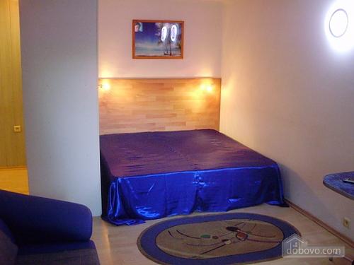 Квартира в центрі Кривого Рогу, 1-кімнатна (60131), 001