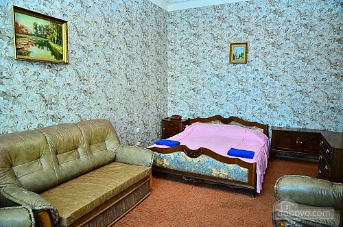 24/1  Velyka Vasylkivska Street, Kiev, Studio (38274), 002