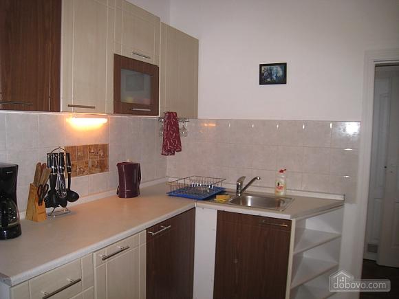 Квартира в центре Киева, 3х-комнатная (44609), 016