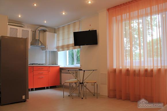 Квартира в центре города, 1-комнатная (45796), 001