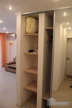 Квартира в центре города, 1-комнатная (45796), 010