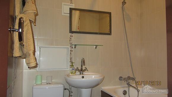 Apartment in the city center, Un chambre (75437), 005