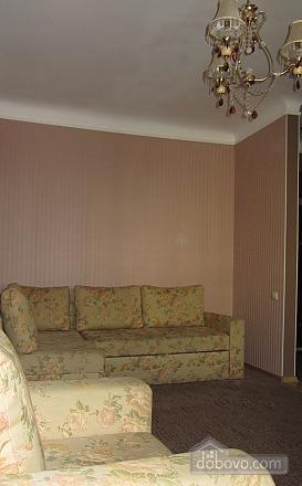 Apartment in the city center, Un chambre (75437), 009
