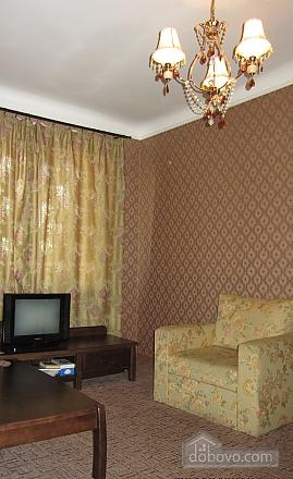Apartment in the city center, Un chambre (75437), 002