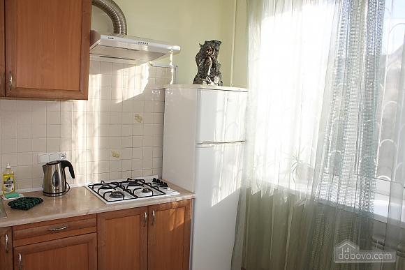 One bedroom apartment on Triokhsviatytelska (602), One Bedroom (60599), 029