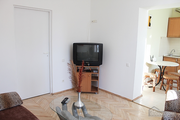 One bedroom apartment on Triokhsviatytelska (602), One Bedroom (60599), 030