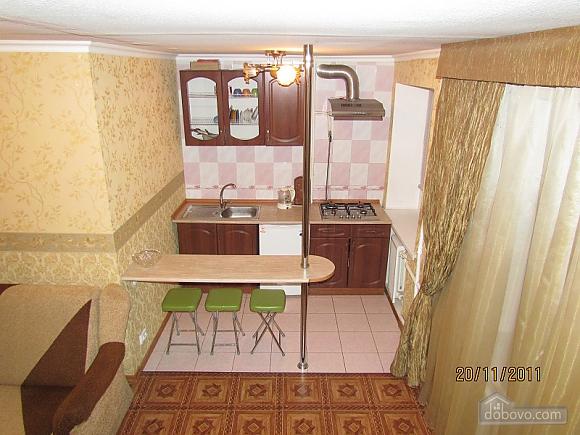 Pechersk apartment, Una Camera (64743), 002