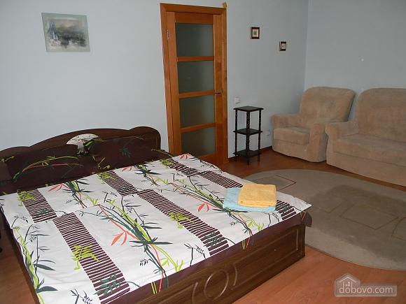 Comfortable apartment in Kiev center, One Bedroom (72861), 001