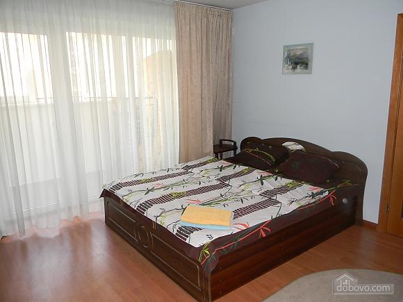 Comfortable apartment in Kiev center, One Bedroom (72861), 002