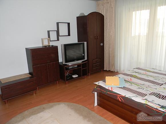 Comfortable apartment in Kiev center, One Bedroom (72861), 003