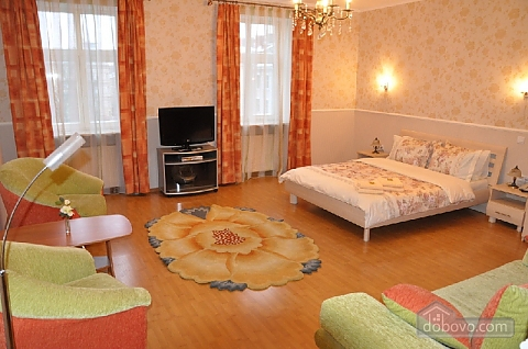Apartment near Town Hall, Monolocale (34076), 001