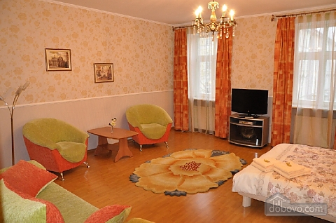 Apartment near Town Hall, Monolocale (34076), 002