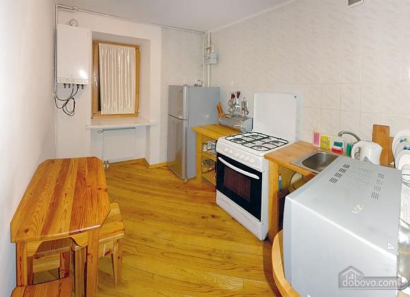 Уютная квартира в Трускавце, 3х-комнатная (14042), 004