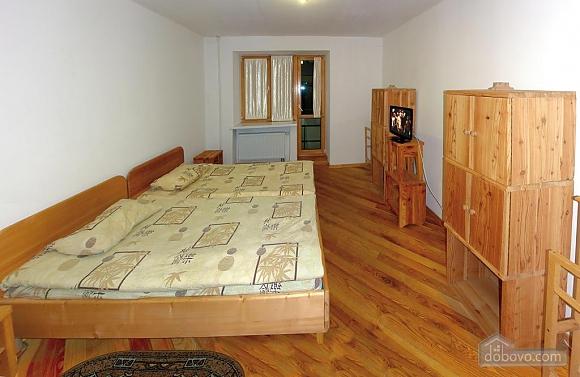 Уютная квартира в Трускавце, 3х-комнатная (14042), 005