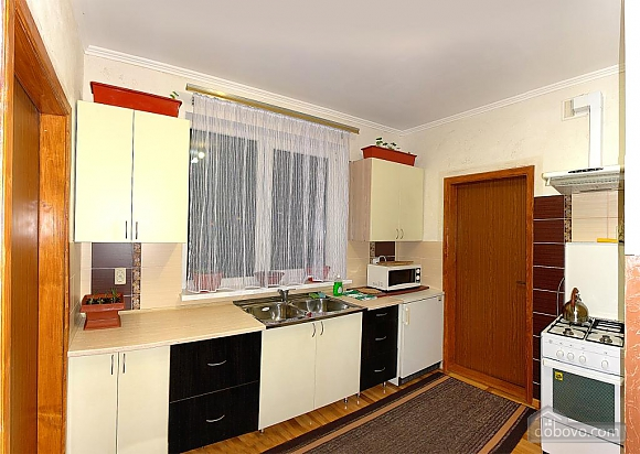 Apartment in Truskavets, One Bedroom (14937), 003