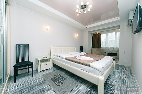 VIP design on Lesi Ukrayinky, Tre Camere (24302), 007
