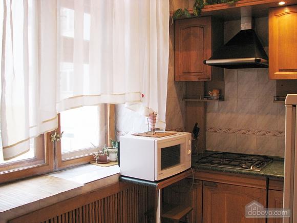 Апартаменти в центрі міста, 2-кімнатна (45760), 007